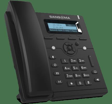 Sangoma s206